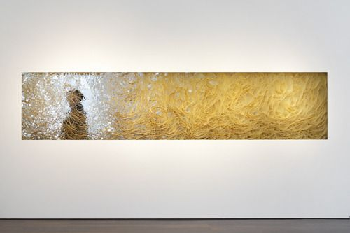 Pace Gallery - Tara Donovan