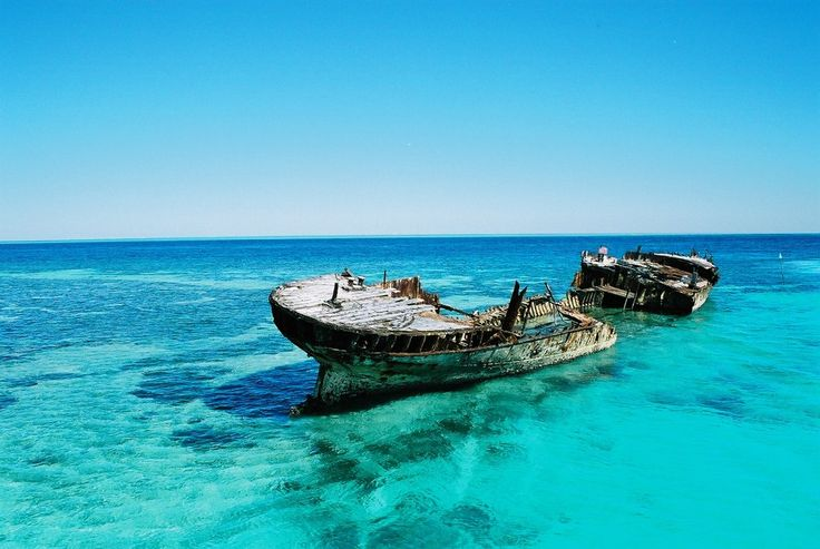 Heron Island, Great Barrier Reef. Go do some snorkling at shark bay, You Will be amazed :)