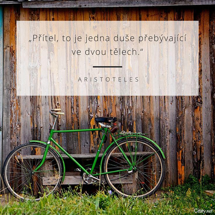 Přítel, to je jedna duše přebývající ve dvou tělech. -  Aristoteles