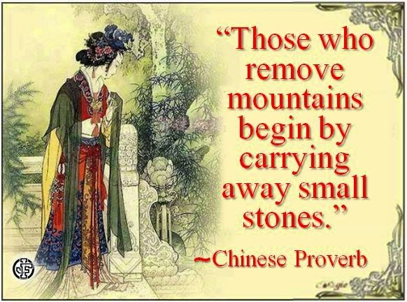 """""""Those who remove mountains begin by carrying away small stones."""" --Chinese Proverb"""