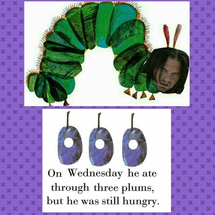 The very Bucky caterpillar<<<There is something very wrong with this fandom, and I am glad to consider myself as a part of it!<<this about sums it up...