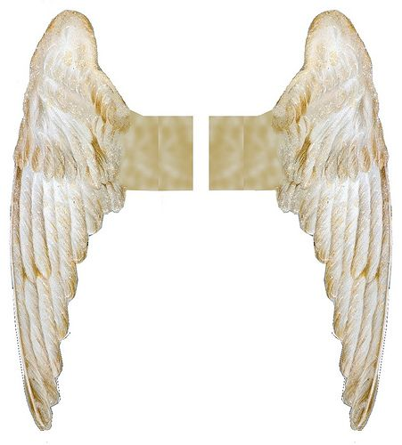 angel wings ~ free images for crafters