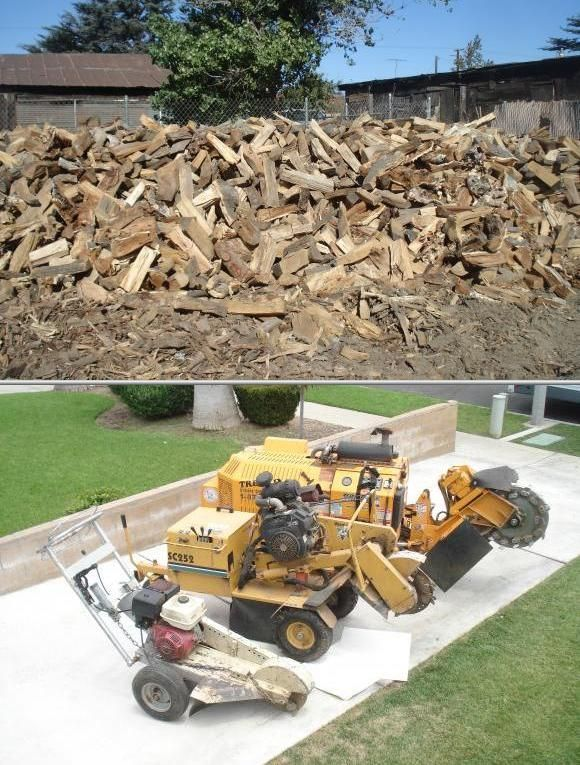 Trees R Us is a state-licensed arborist services provider that offers tree trimming and removal as well as stump grinding. Tree trimming cost for senior citizens are discounted.