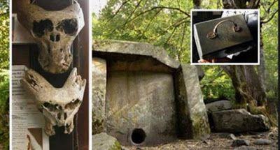 Russia: trovati due teschi alieni e una valigetta con l'emblema della Ahnenerbe delle SS (Video) | ilQUIeORA