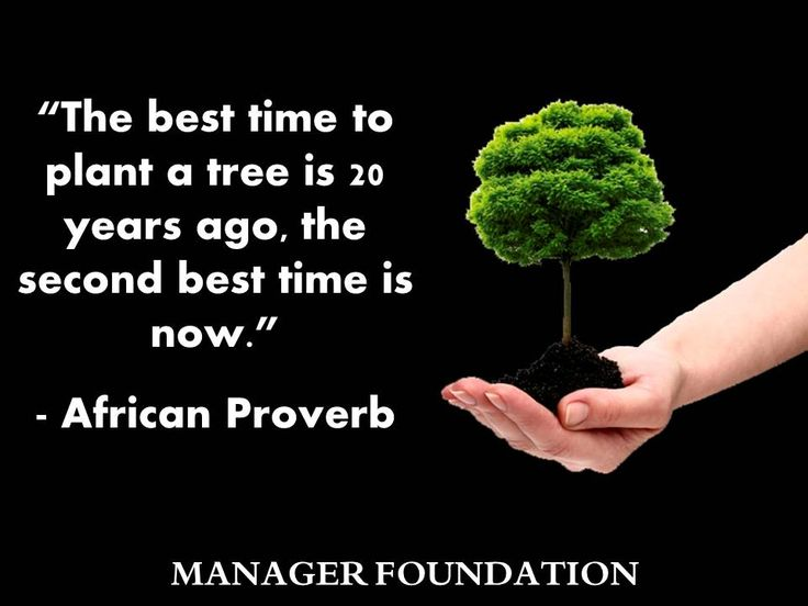 The Importance of Growth and Development...