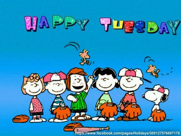 Happy Tuesday, Happy