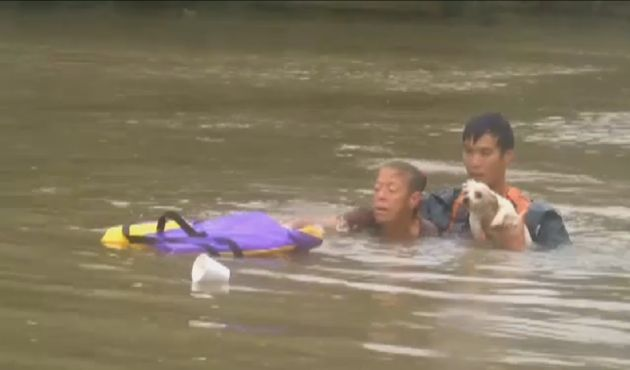 Harrowing Video Shows Baton Rouge Woman, Dog Pulled From Sinking Car - Baton Rouge August 2016.