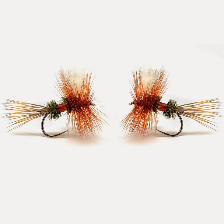 17 best images about fly fishing on pinterest | trout fishing, fly, Fly Fishing Bait