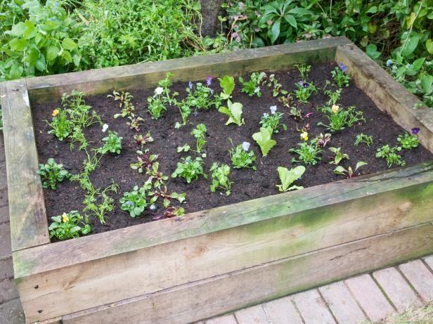 10 best Backyard Produce Garden images on Pinterest ...