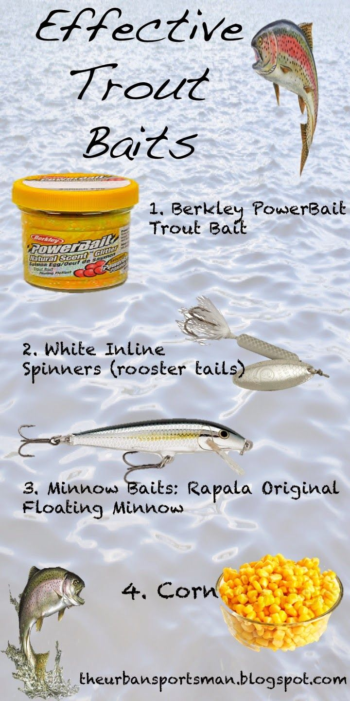 A few baits effective for stocked trout