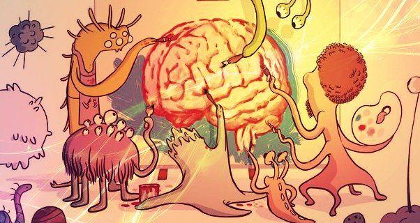 I migliori probiotici per la psiche. Come curare la connessione intestino-cervello con gli psicobiotici