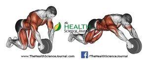 © Sasham | Dreamstime.com - Exercising for bodybuilding. Straightening simulator wheel