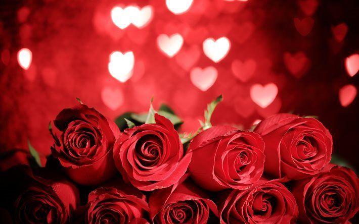 Scarica sfondi rose rosse, il Giorno di san Valentino, romantico bouquet, rose, rose bouquet