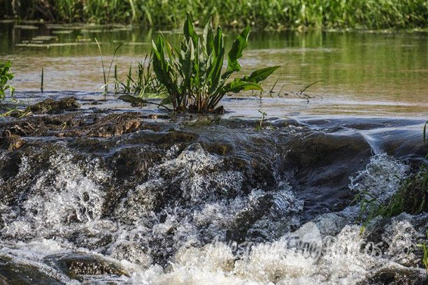 86-awesomefreephotos-nature-river-rapids-750