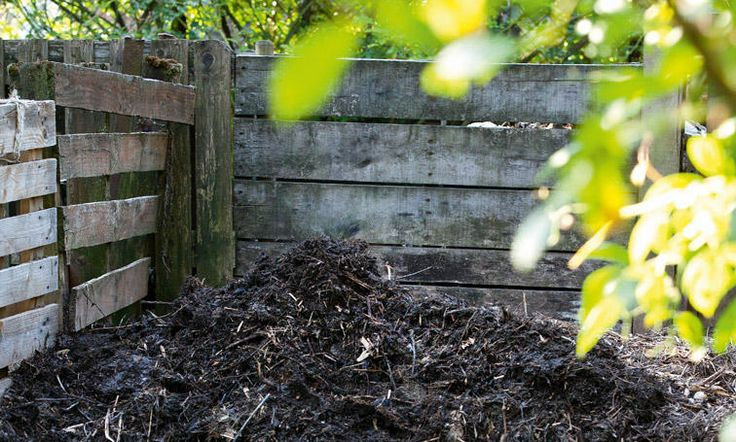 Les 25 meilleures id es de la cat gorie le compostage sur for Le jardin aux 100 secrets