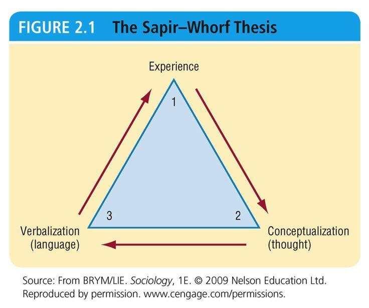 the sapir-whorf thesis states that