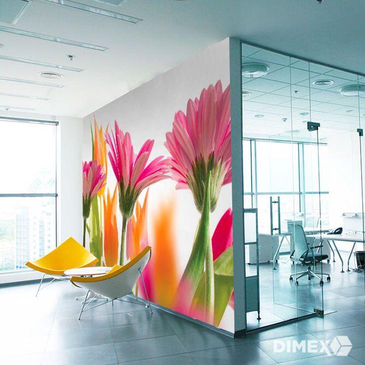 Fototapeta s kvetmi v sviežich farbách | DIMEX