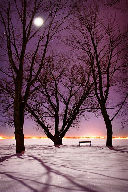 Bright Night at Bellevue Park by tfavretto - Sault Ste. Marie - Ontario - Canada