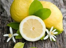 Αποτέλεσμα εικόνας για lemonia