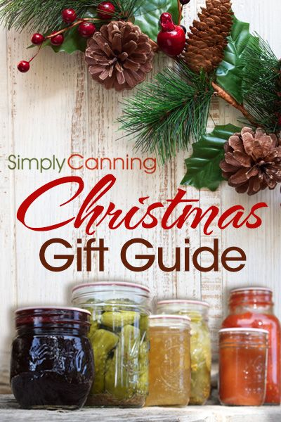 2014 Christmas Gift Guide. Recommendations by Sharon