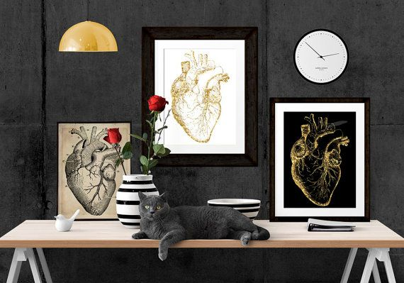 Cardiology Office Art Anatomical Heart Print by PrintsFineAndDandy