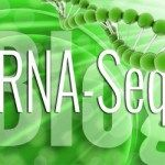 RNA sequencing (RNA-Seq) uses the capabilities of high-throughput sequencing methods to provide insight into the transcriptome of a cell. Compared to previous Sanger sequencing- and microarray-based methods, RNA-Seq provides far higher coverage and greater resolution of the dynamic nature of the tra