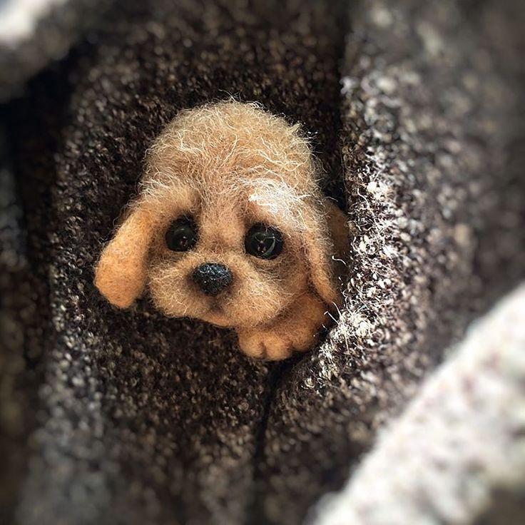 Пёсик-брошь для чудесной малышки