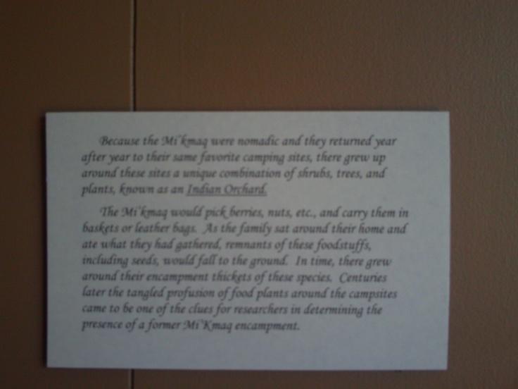 Museum Info
