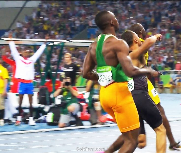 Video. Olympic Games Rio 2016. Men, 100 m. Final. ... 46  PHOTOS        ... It was Bolt's historical win of seventh Olympic gold medal.        More details:         http://softfern.com/NewsDtls.aspx?id=1110&catgry=3            #Usain Bolt, #sport icon, #Olympic Games Rio 2016, #SoftFern Sport News, #Rio 2016, #final, #SoftFern videos