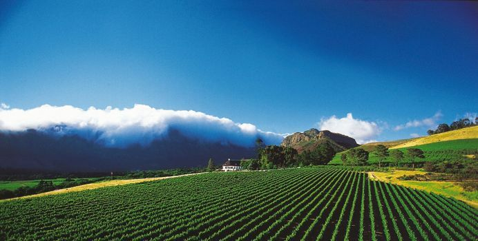 Mont Rochelle offers superb accommodation in the winelands area of Franschhoek