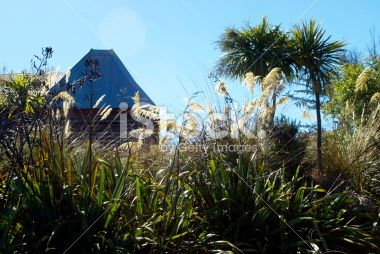 New Zealand Flora with old Hop House Roof Royalty Free Stock Photo