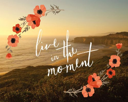 live in the moment: Life Coach, The Scripts, Alyssa Nassner, Remember This, Scripts Fonts, Tattoo Quotes, Poppies, Inspiration Quotes, Mottos