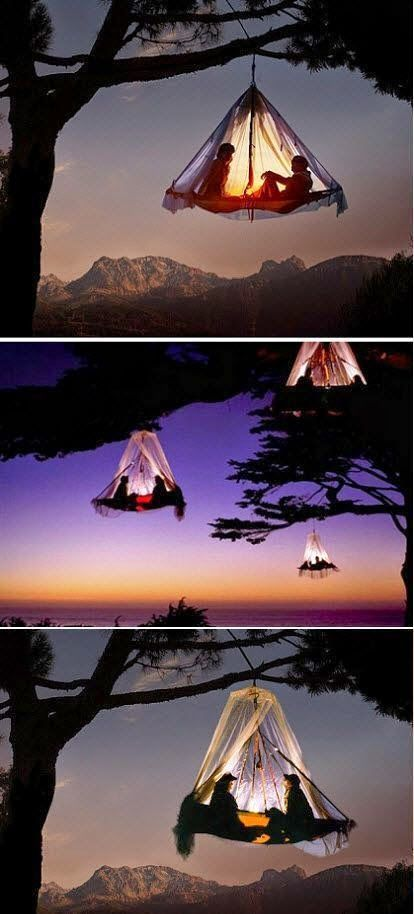 Amazing Tree Camping in Germany,, Awesome Place!!