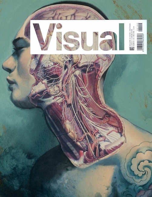 Visual Magazine Cover by Fernando Vicente #colourschemes #boxes-on-photos #covers