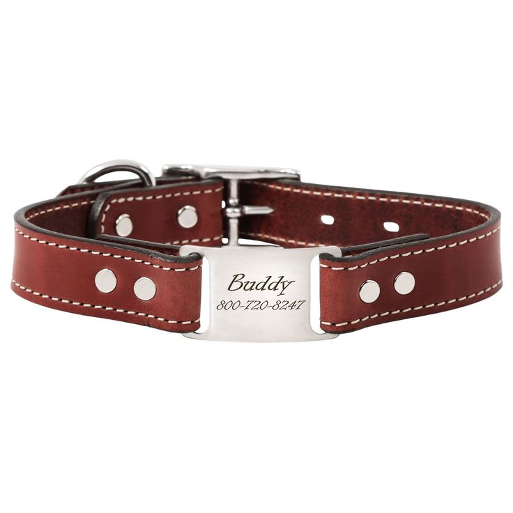 ideas about Personalized Dog Collars on Pinterest