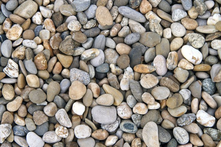 Different mulches work better for different purposes. The kind of mulch you choose can have positive or negative effects on the plants. This article will address the question: what is river pebble mulch, as well as ideas for landscaping with rocks and pebbles.