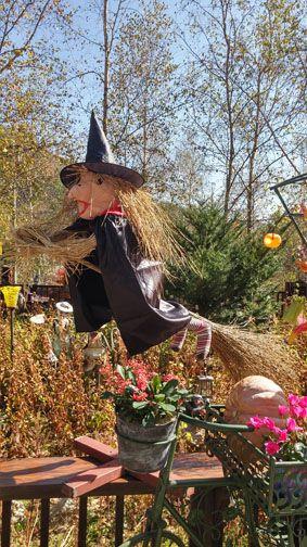Scarecrow, Fall in Herb Festival, Farm Herbnara, Korea