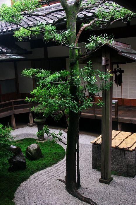 半夏生咲く庭(建仁寺塔頭・両足院) : 花景色-K.W.C. PhotoBlog