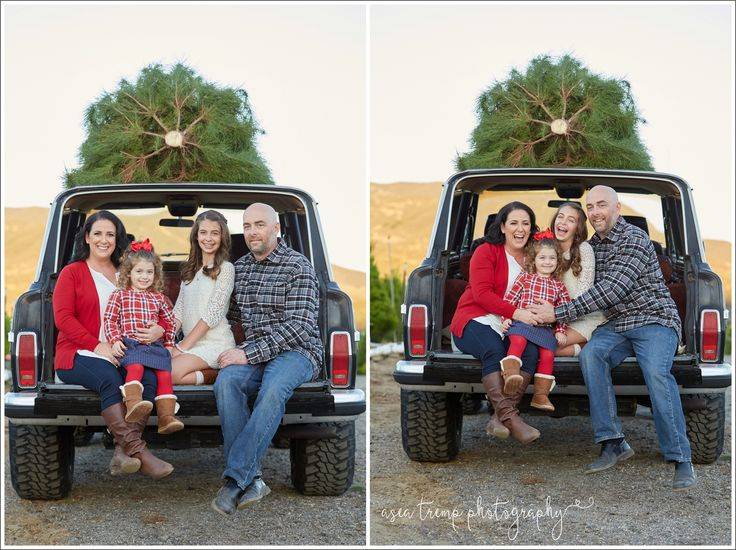11 best Peltzer Pines Christmas Tree Farm Family Photo Sessions ...