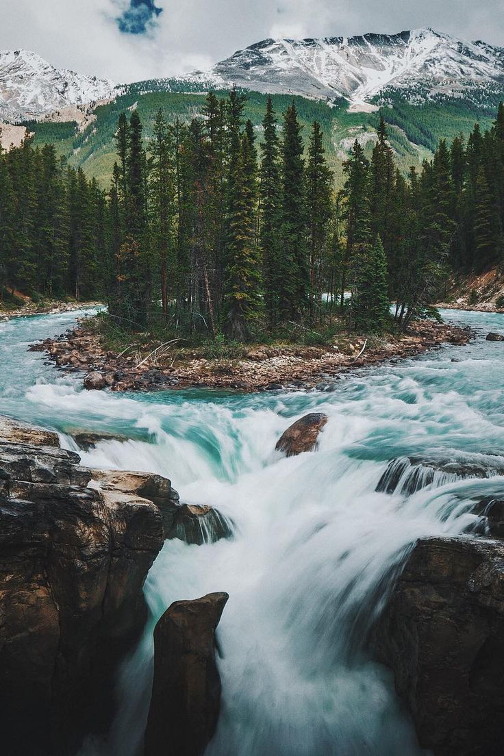 Conifer forest river waterfall island mountains