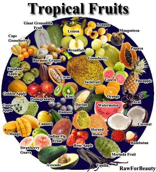 what is the difference between fruit and vegetable tropical fruit