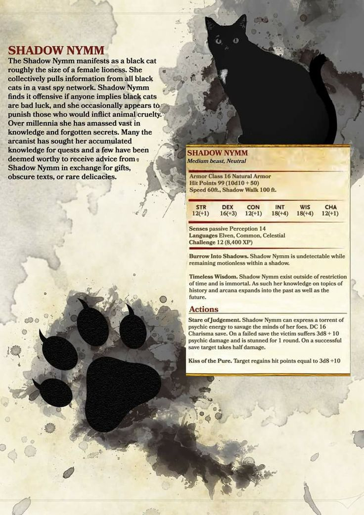 Don't play D&D but this is cool.
