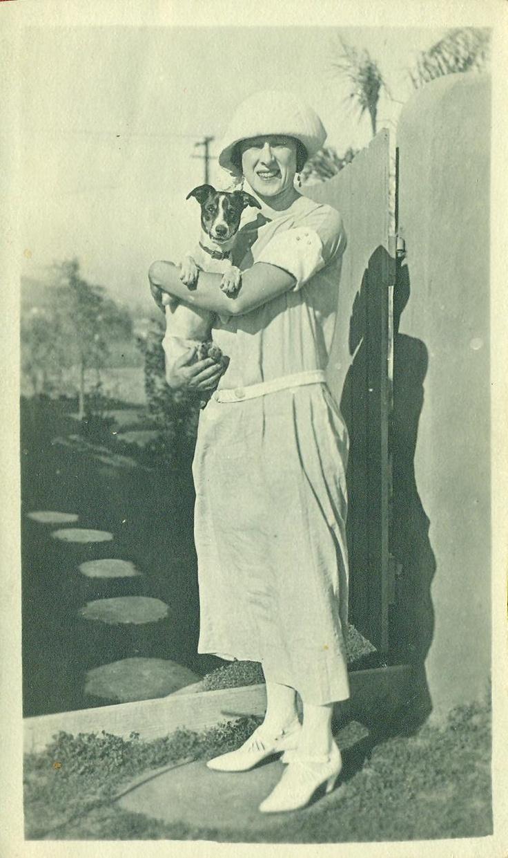 vintage rat terrier photo
