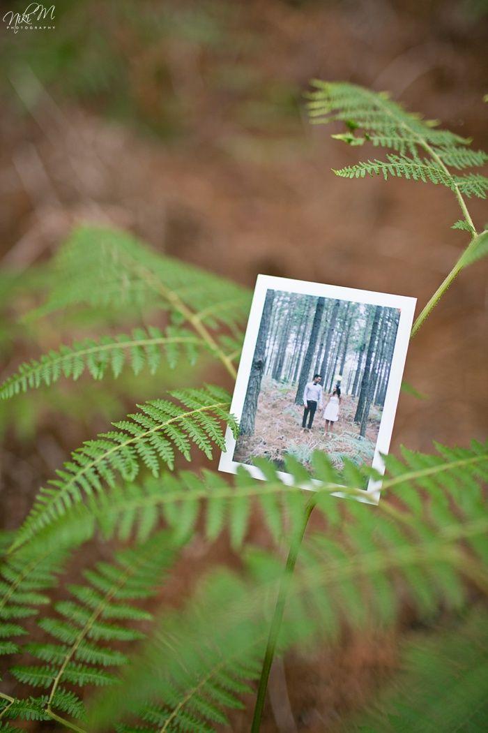 Kelly and Lloyd's Tsitsikamma Forest E-Shoot; Polaroid FP 100c
