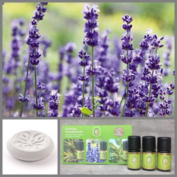 """Det """"Duftende hus-apotek""""  Sampak med 3 æteriske olier. Lavendel - Pebermynte - Tea Tree. Olierne kan bl.a hjælpe med søvnproblemer og afstressning spændinger i hoved og nakke og skærpelse af koncentrationen samt hjælp mod hoste og forkølelse!  #webshop #æteriskeolier #aromaterapi #husapotek #massage #duftsten #duftlampe #dufterdejligt #stressfri #velvære #økologisk"""