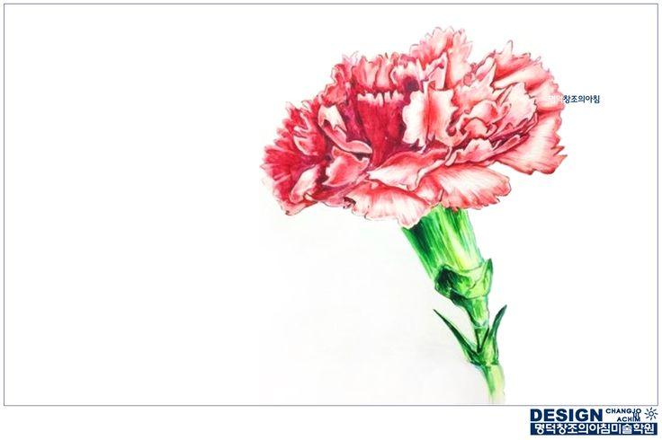 #그림잘그리는학원 #명덕창조의아침 #대구미술학원 #대구입시미술학원 #창조의아침 #미술학원 #입시미술 #기초디자인 #개체묘사 #개체표현 #사실묘사 #꽃 #식물 #카네이션 #carnation