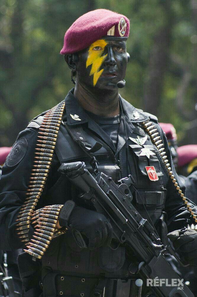 Unidad fusilero paracaidista del grupo de fuerzas