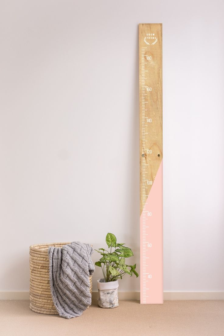 Image of Vinyl Ruler Growth Chart More