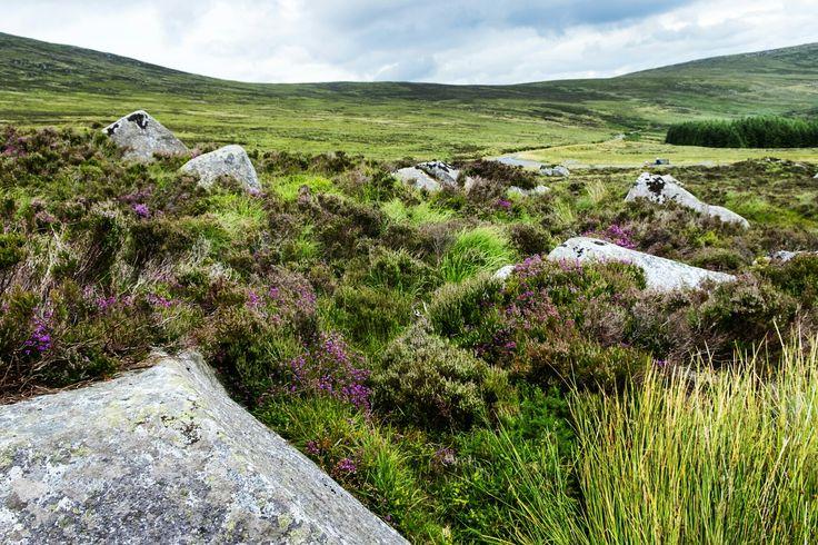 Wicklow Mountains National Park, Ireland #PSILoveYou