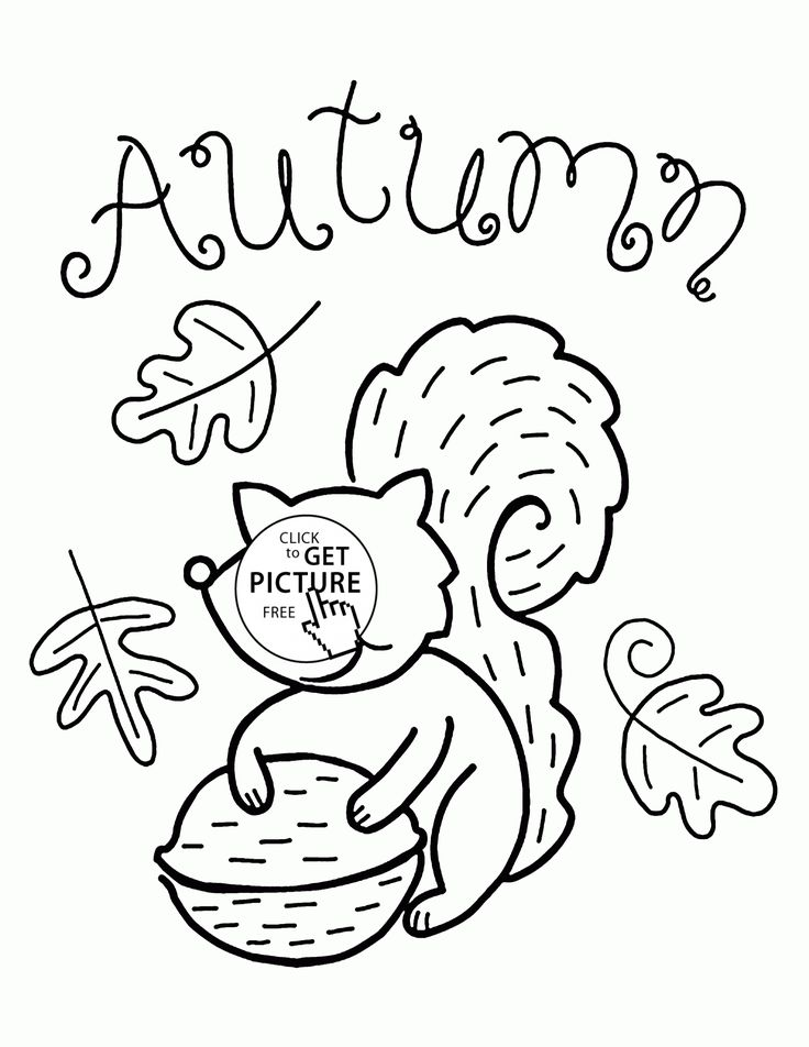 Fall and Funny Squirrel coloring pages for kids, fall